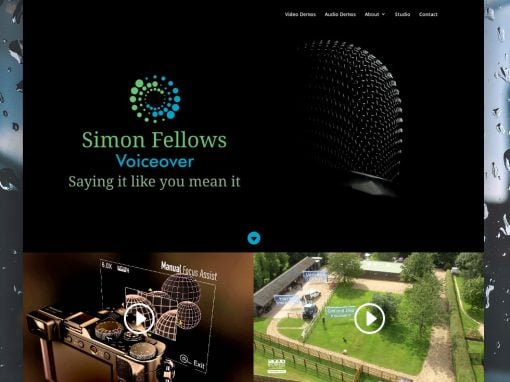 Simon Fellows