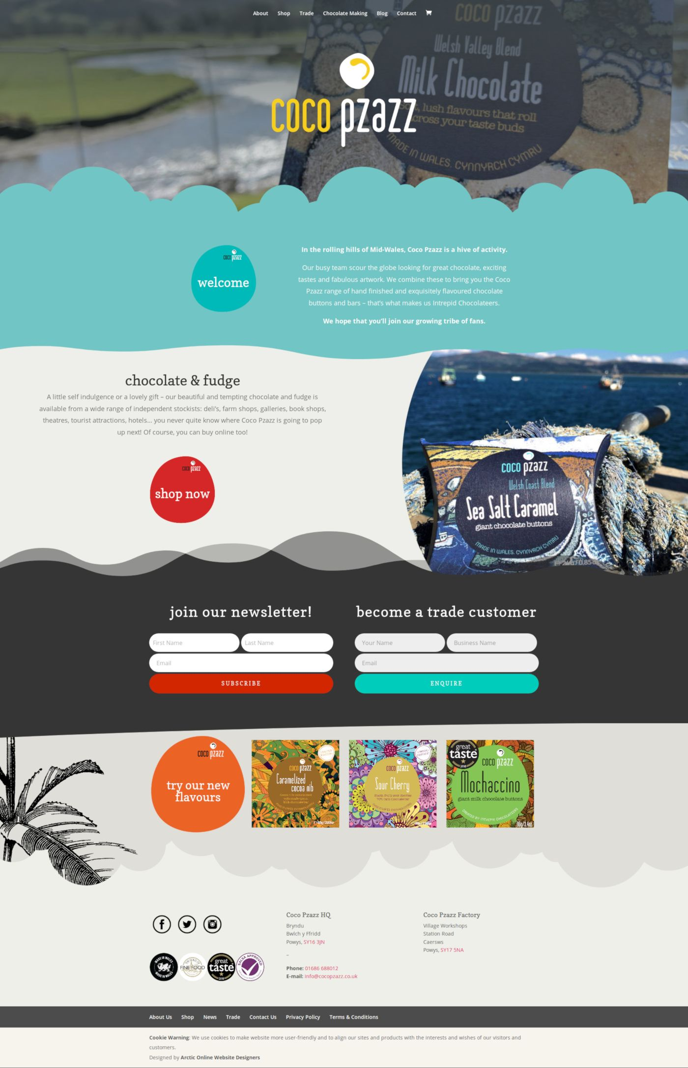 Home Page Screenshot of WordPress Website Design For Coco Pzazz in Wales